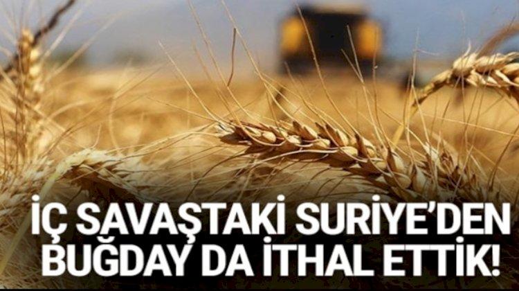 iç savaş olan suriye'den buğday zeytin alıyoruz